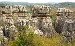 Shi Lin stone forest national park. Kunming. Royalty Free Stock Image