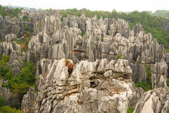 Shi Lin stone forest national park. Kunming. Royalty Free Stock Photography