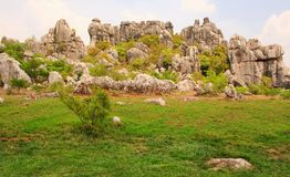 Shi Lin stone forest national park. Kunming. Stock Photo