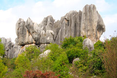 Shi Lin Stone forest national park in Yunnan province, China Stock Photography