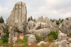 Shi Lin Stone forest national park in Yunnan province, China Royalty Free Stock Images