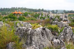 Shi Lin Stone forest national park in Yunnan province, China Royalty Free Stock Photos