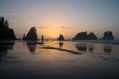 Shi Shi Beach Sunset Olympic National Park. In NW Washington State.  Sun sets as bands of cumulus clouds float by.  Ocean waves pulsing with the headlands in Royalty Free Stock Image