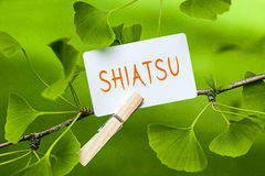 shiatsu Fotografia Stock Libera da Diritti