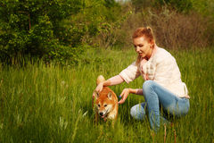 Shiba Inu dog and a girl on meadow. Royalty Free Stock Photography