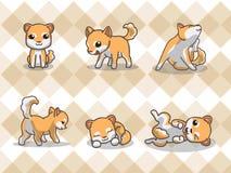 Shiba inu. Dog, Shiba inu with seamless pattern Stock Illustration