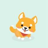 Shiba Inu dog. Stock Photo