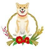 Shibainu in de Japanse kroondecoratie - vooraanzicht royalty-vrije illustratie
