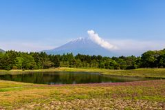 Shibazakura-Blumenfeld mit dem Fujisan San im Hintergrund Lizenzfreie Stockbilder