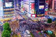 Shibuya-Überfahrt nachts lizenzfreie stockfotografie