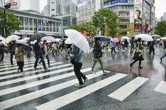 shibuya скрещивания Стоковое фото RF