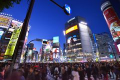 Shibuya Foto de Stock Royalty Free