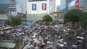 Shibuya-?berfahrt ist einer der besch?ftigtsten Zebrastreifen in der Welt stock video footage