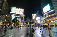 Shibuya Crossing Stock Image
