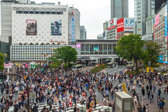 Shibuya Crossing aerial view Royalty Free Stock Photos