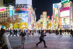 Shibuya Crossing night Stock Photography