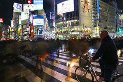 Shibuya crossing by night, Tokyo Stock Photos