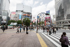 Shibuya Crossing Stock Images