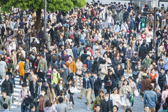 Shibuya Crossing Royalty Free Stock Photography