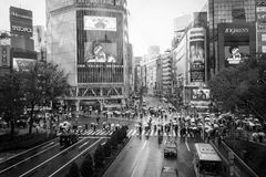 Shibuya crossing in rainy day Stock Photography