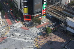 Shibuya crossing in Tokyo Royalty Free Stock Photo