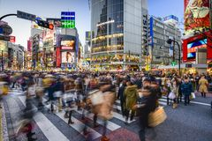Shibuya Crossing Stock Photos