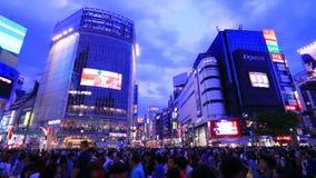 Shibuya Crossing,Tokyo,Japan stock video footage