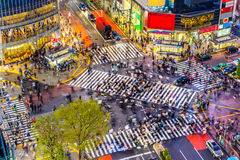 Shibuya Crossing in Tokyo. Tokyo, Japan view of Shibuya Crossing, one of the busiest crosswalks in the world Royalty Free Stock Photos