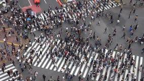 Shibuya de Kruising is ??n van de bezigste zebrapadden in de wereld stock videobeelden