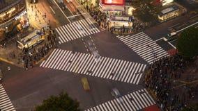 Shibuya die in de regen met paraplu's kruisen stock video