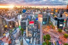 Shibuya die van hoogste mening in Tokyo kruisen stock foto's