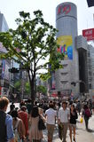 Shibuya district Stock Image