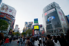 Shibuya genomskärning royaltyfria foton