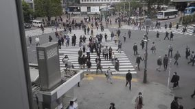 Shibuya-Jagdüberfahrt, Tokyo, Japan stock video footage