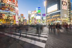 SHIBUYA, JAPAN - FEBRUARY 19, 2016 : Shibuya big crosswalk in Ja. Pan, Beautiful cityscape at night stock image