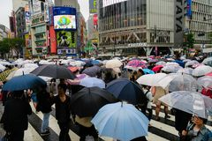 Shibuya, Japan: People with umbrellas crossing on a raining day. Shibuya crossing is one of busiest places in Tokyo and is featured in many movies Royalty Free Stock Photo