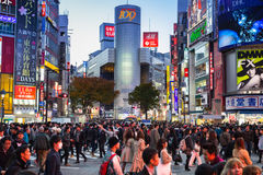 Shibuya scramble crossing in Tokyo at dusk, Japan Royalty Free Stock Photography