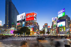 Shibuya scramble crossing in Tokyo at night, Japan Royalty Free Stock Photo