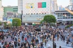Shibuya Skrzyżowanie Fotografia Royalty Free
