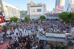 Shibuya Skrzyżowanie Zdjęcia Stock