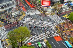 Shibuya, Tokyo, Japan. Tokyo, Japan view of Shibuya Crossing, one of the busiest crosswalks in the world Stock Images