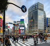 Shibuya, Tokyo Stock Photos