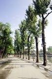 shichahai Пекин старое Стоковая Фотография RF