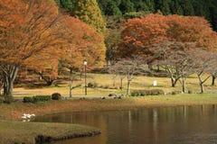 Shidaka lake, oita prefecture japan. Autumn leaves are beautiful on the lake side in autumn Stock Photos
