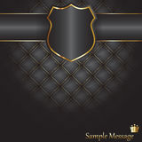 Shield background Royalty Free Stock Images