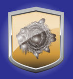 Shield fugu. Billboard with a picture of the puffer fish Royalty Free Stock Photos