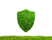 Shield Green Royalty Free Stock Images