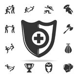 Shield icon. Set of Cfight and sparring element icons. Premium quality graphic design. Signs and symbols collection icon for websi. Tes, web design, mobile app Stock Images