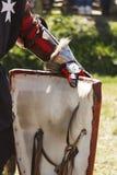 Shield knight Stock Photography