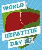 Shield with Liver Design Commemorating Prevention in Hepatitis Day, Vector Illustration. Shield symbolizing prevention and care of hepatic diseases and Stock Image